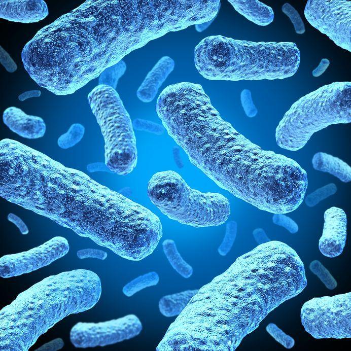 bacterii gura)
