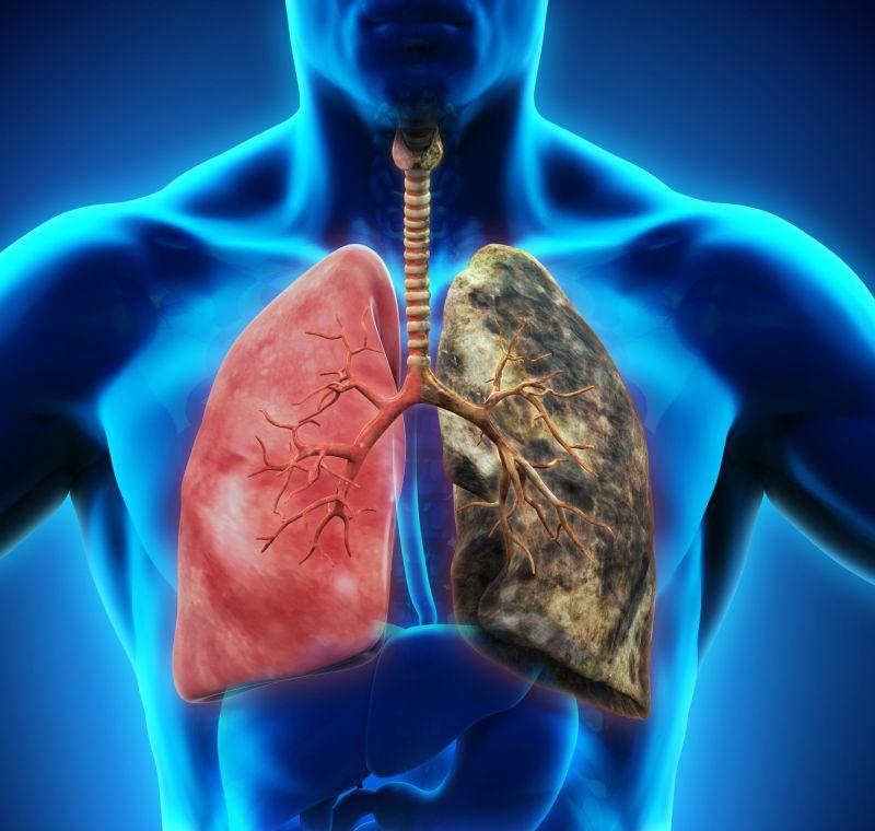 Ce efecte are nicotina asupra organismului