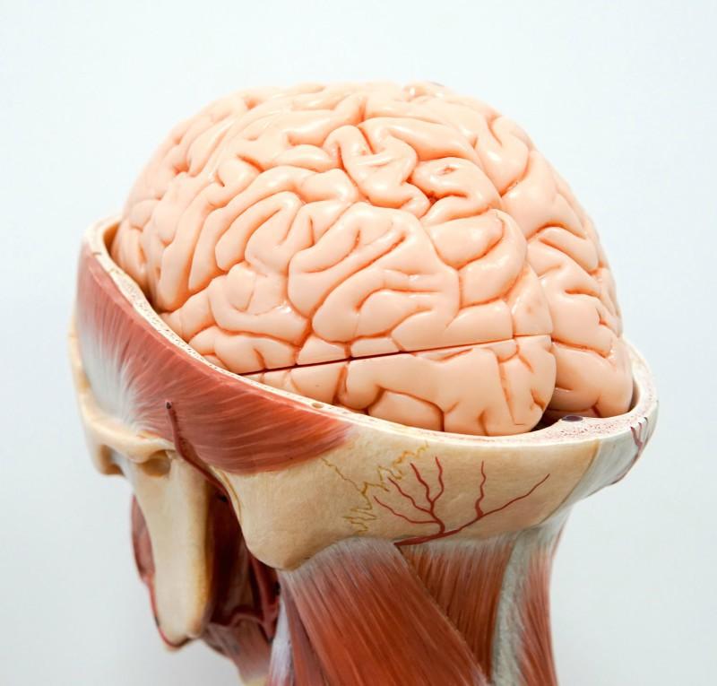 ce este hidrocefalia vederii
