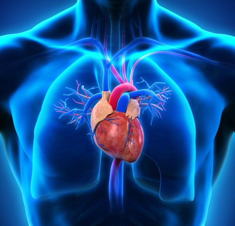 hipertensiune pulmonară pierdere în greutate simptome de arsură a grăsimilor